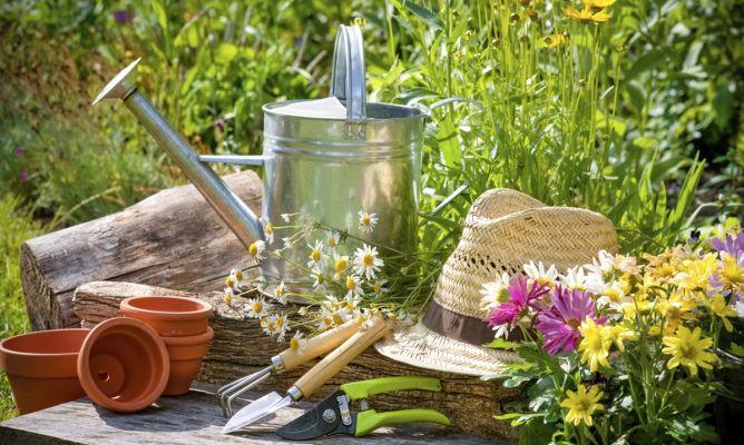 Satisfacţii de grădinar
